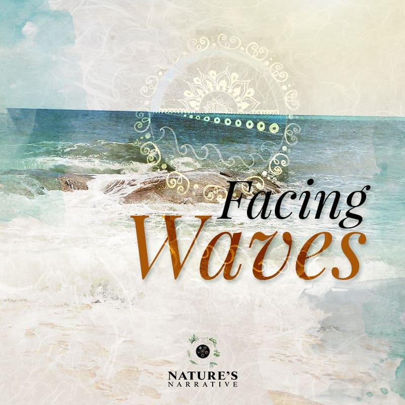 Facing Waves | Nature's Narrative | Barbara Seie