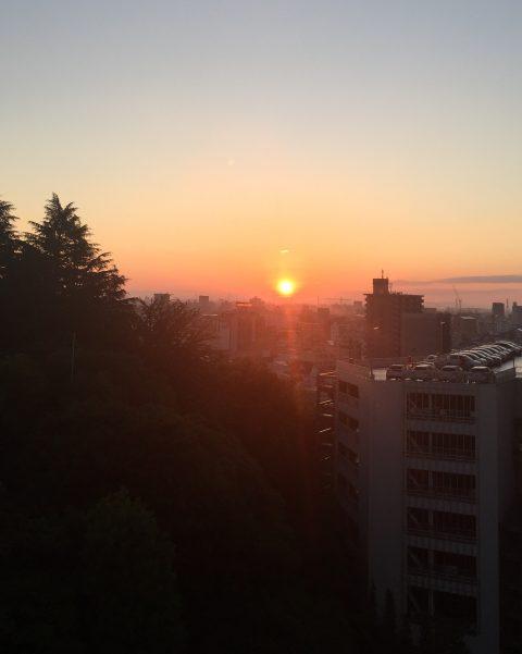 The Sweet Spot | Sun Setting in Japan | Barbara Seie | Nature's Narrative