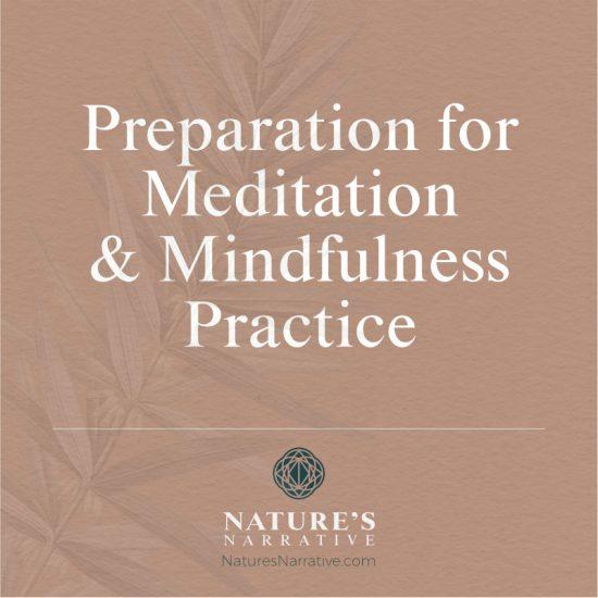 Preparation for Meditation & Mindfulness Practice Barbara Seie Nature's Narrative